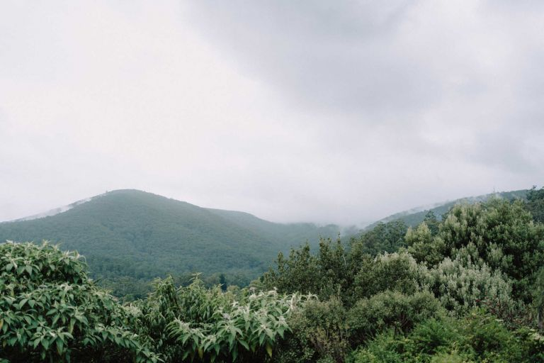 Mount Donna Buang elopement