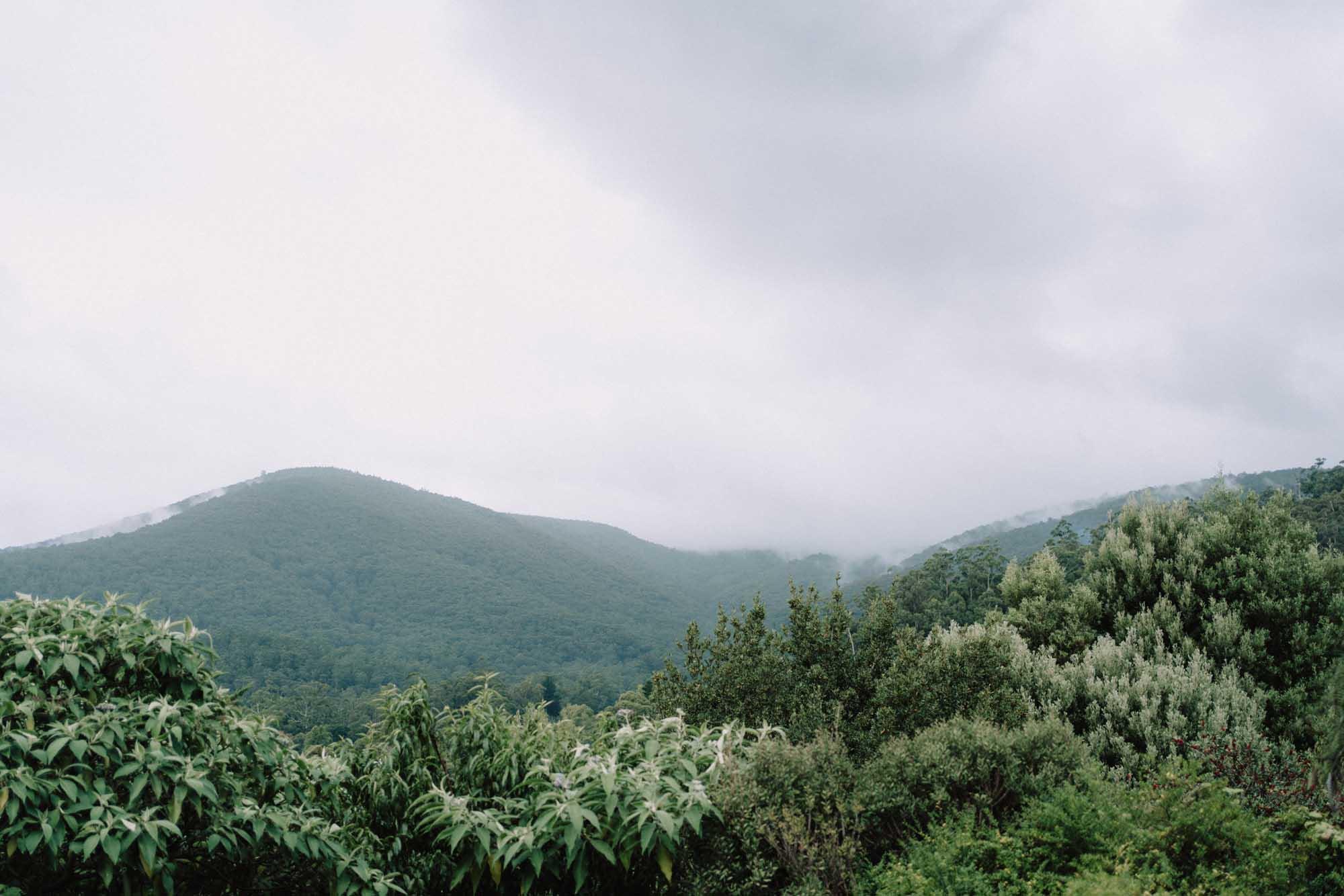 Mount Donna Buang elopement