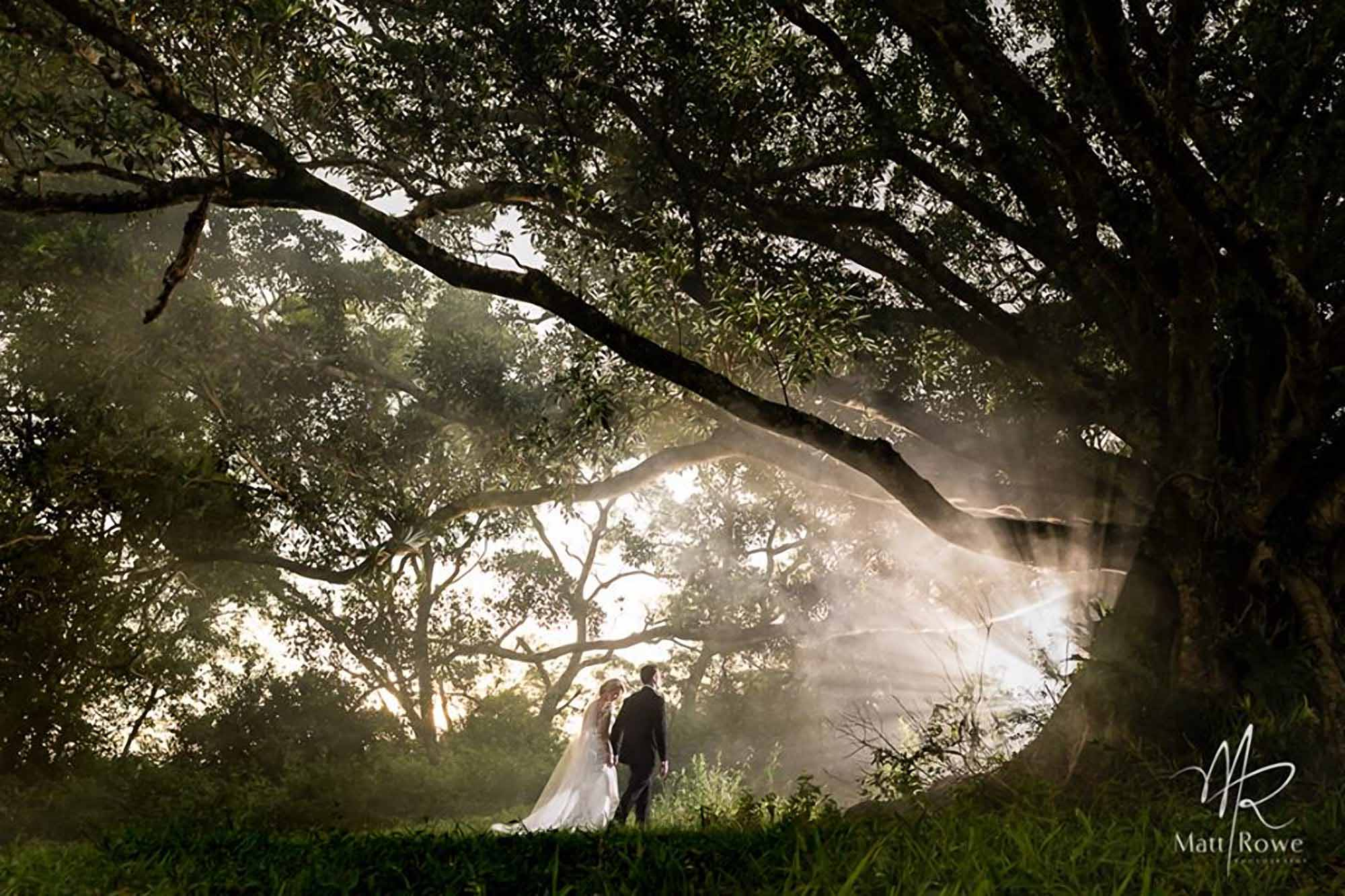 sunshine coast elopement photographers
